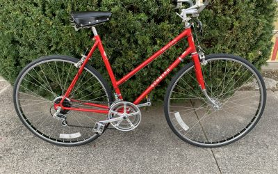 Red is for Riding