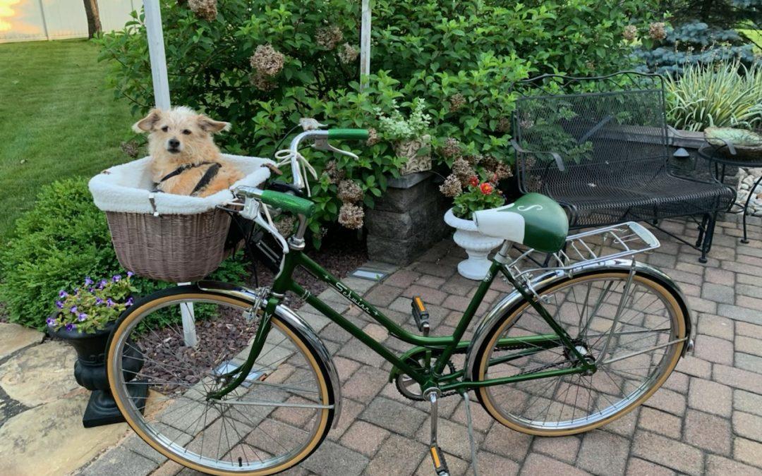 Zanco's vintage ride!